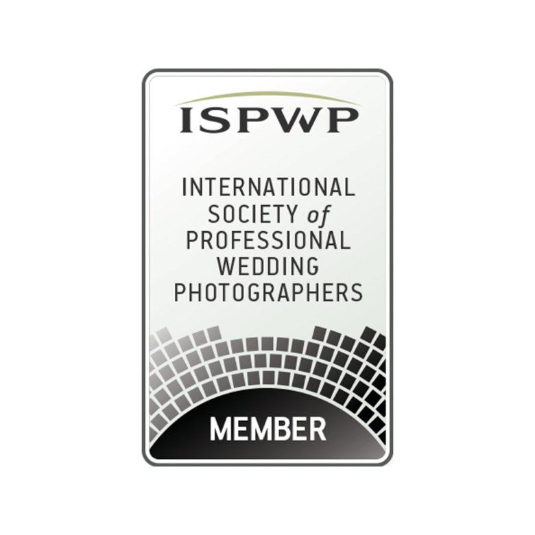 Logo Associazione internazionale dei fotografi professionisti di matrimonio di cui fa parte Nino Lombardo Migliori fotografi per matrimonio